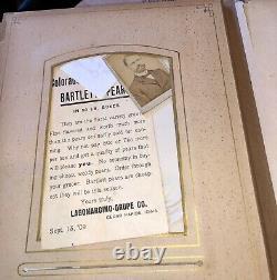Antique Photo Album Civil War Era IOWA Philadelphia New York Tax Stamps IDs 1800