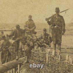 Civil War CDV 44th New York with Quaker Guns at Centreville, VA Mathew Brady